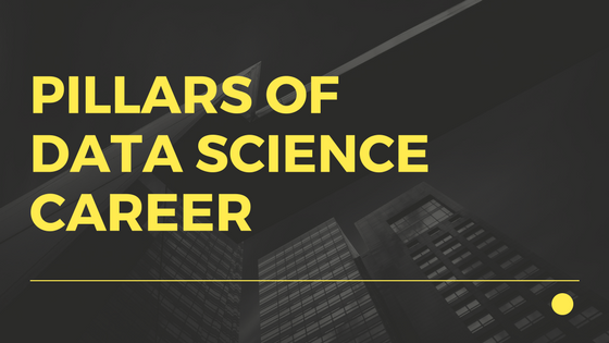 data scientist career